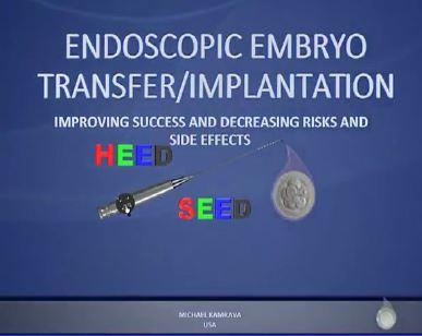 Hysteroscopy embryo.JPG